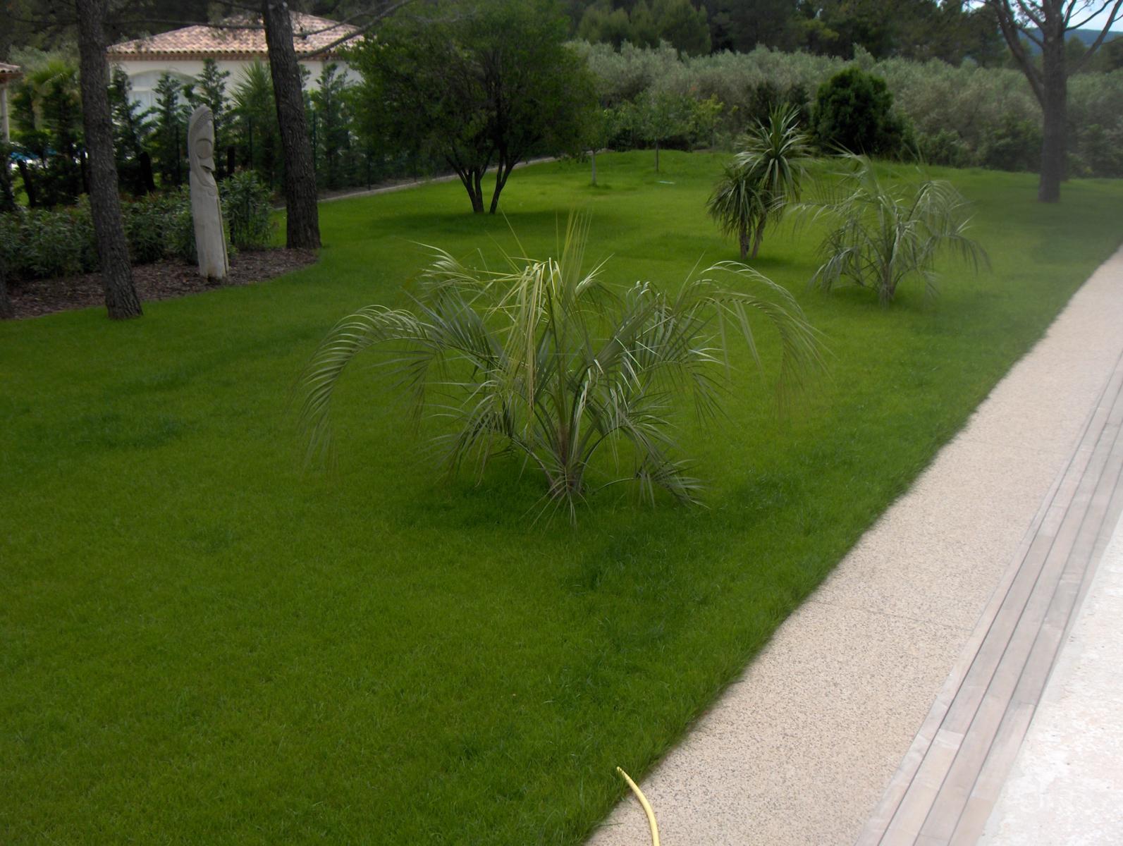 gazon sem gazon en plaque gazon synth tique vert parc cr ateur de jardins paysagiste. Black Bedroom Furniture Sets. Home Design Ideas